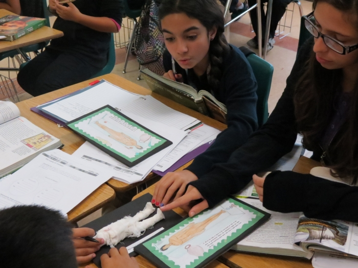 student learner